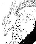 dragonprincess2